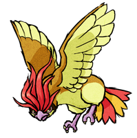 Pidgeotto WWS by the19thGinny