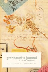 Grandaunt's journal by mellowmint