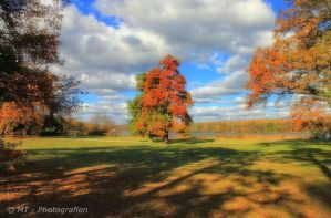 The autumn shows its most beautiful pages 6 by MT-Photografien
