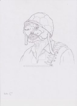 WWII Snapping Turtle Soldier by Cirkadian