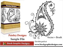 Paisley Designs Brush Pack by Stockgraphicdesigns