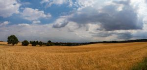 Bedfordshire Pano! by Mincingyoda