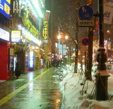 Sapporo Days pt.2 by enraa