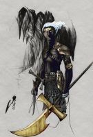 Dark Elf hunter by cmalidore