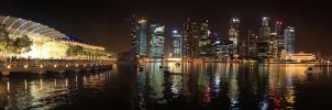 Singapore My Home by ValeforHo