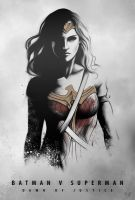 DAWN OF JUSTICE - WONDER WOMAN by Niyoarts