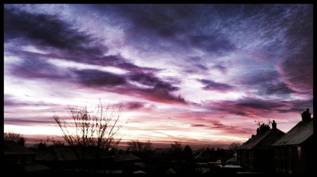 Mixed berry skies by caelia