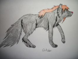 October wolf by shiro-chan63