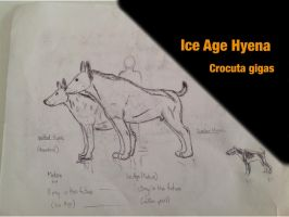 Ice Age Hyena by Midiaou