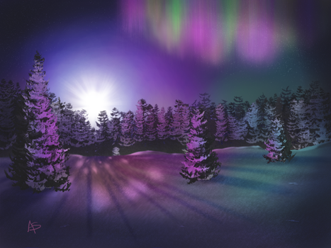 Northern Lights at Night by vanndra