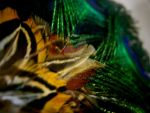 feathers by izha