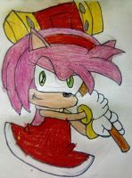 Amy Rose by TheOneAndOnlyCactus