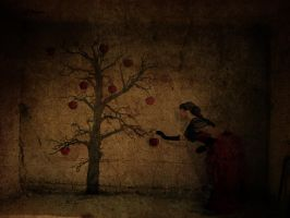 Apples on my Wall by dusunur