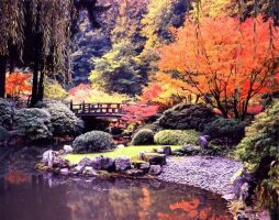 Japanese Garden in Autumn 2 by Chris-Young