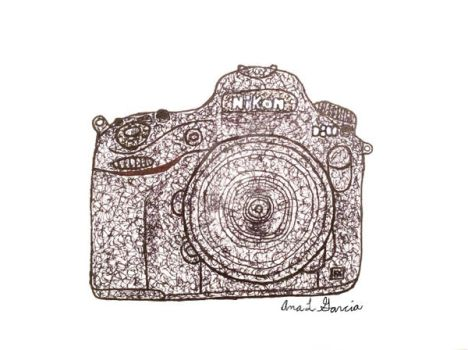 Nikon D800 Scribble by bana23