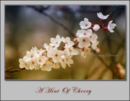 A Hint Of Cherry by o0oLUXo0o