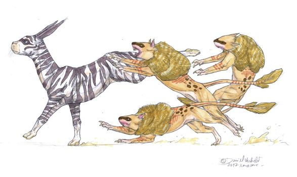 Kaizaris chasing down an African Lagothere by Gredinia