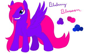 Blueberry Blossom's Reference Sheet by Insane-Lioness