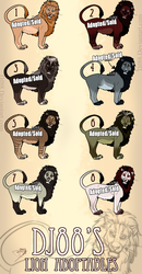 $10.00 Male Lion Adoptables -CLOSED- by DJ88