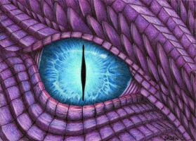 Dragon Eye by Bajan-Art