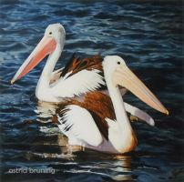 Pelican Duet - OIL PAINTING by AstridBruning