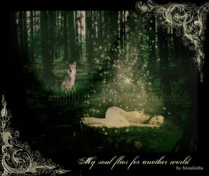 My soul flies for another worl by Anoukinha