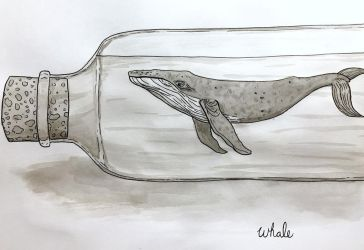 Inktober day 12: Whale by Spice-Illustration
