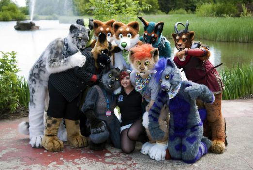 Confuzzled 2013 by FarukuCostumes