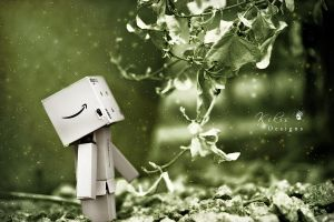 Magical Danbo??? by KikisDesigns