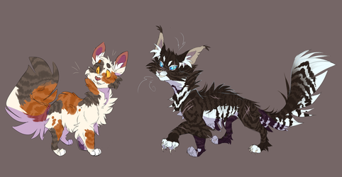Sorreltail and Hawkfrost by WeHaveCandy