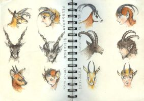 Horns by metalparts