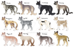 Complex Cat Breedable IV - Points/Trade - Open