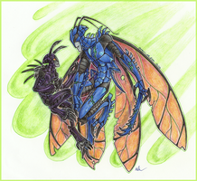 Beetle and Blakavar by Ouari