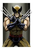 Wolverine Spotlight by Kminor