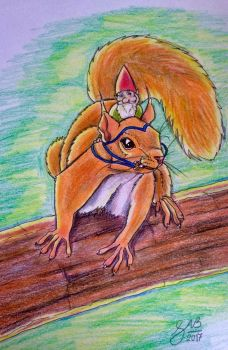 Elf on squirrel  by Cakecatlady