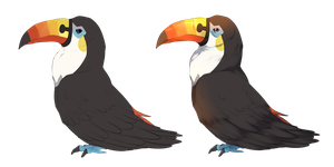 Toucannon - Flat and Shaded