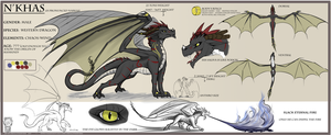 Narkas reference sheet - FERAL by DreycoTheWyrm