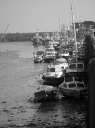 Black and White Boats by TheModerator