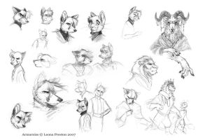 Armarniss Sketches 1 by Leopreston