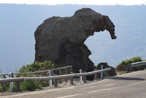 Sardinian Elephant by DamaInNero