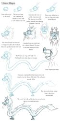 Notes on Chinese Dragons by Expression