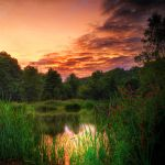 Fishing by Initio