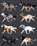 ONE LEFT Semi-natural canine Adoptables by Eredhys