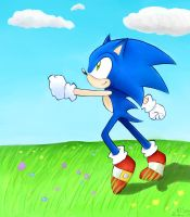 Sonic at a field by vakurii
