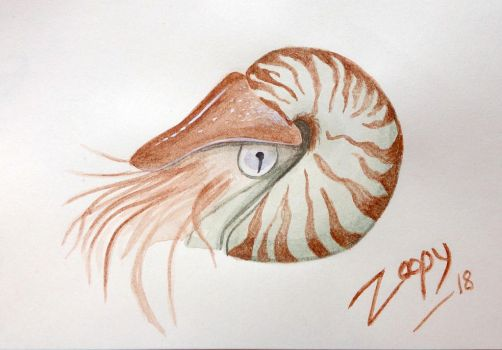 [2 euro commission] Nautilus by l-Zoopy-l