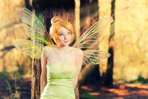 Tinkerbell by MartinWongArts