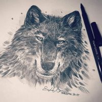 Inktober Day 5: Wolf by TsaoShin