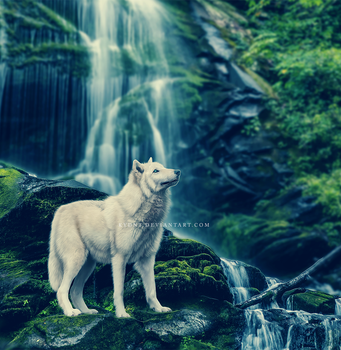 mossy rocks with a wolf on em by Kydnt