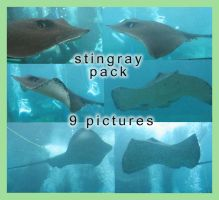 Stingray Pack by GreenEyezz-stock