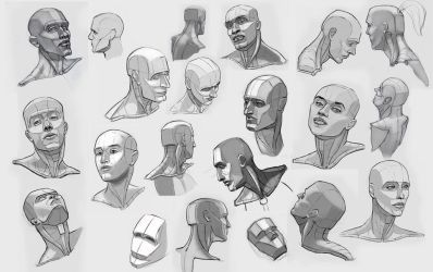 head studies by ndemers
